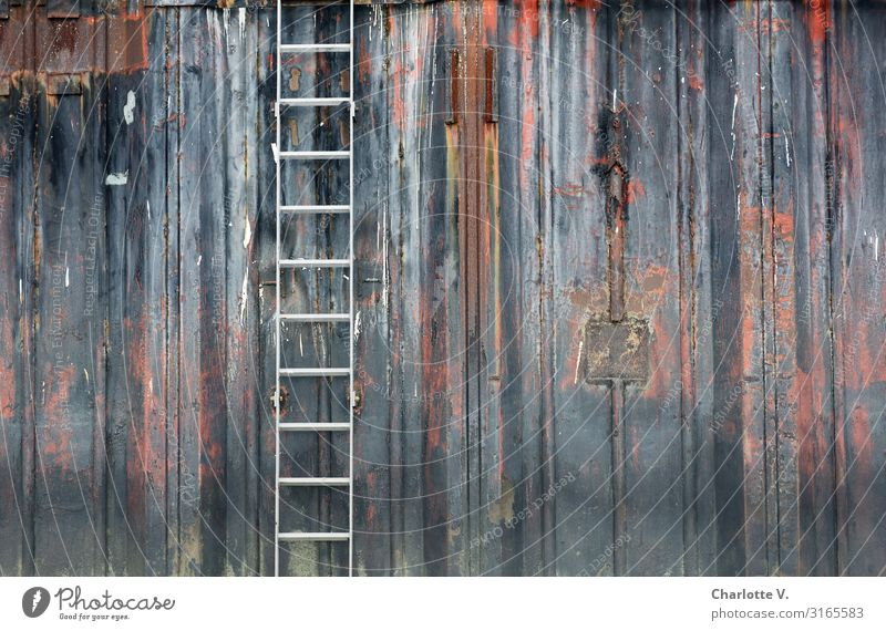 Still life with bucket | UT HH19 Workplace Industry Shovel Ladder Wall (barrier) Wall (building) Harbour Metal Line Old Authentic Exceptional Dirty Dark Simple