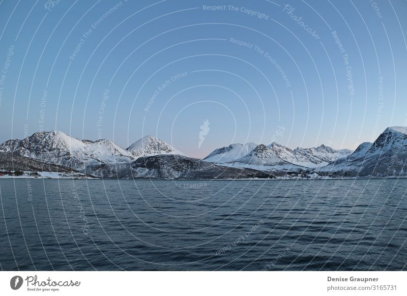 Snow-covered mountains in Norway fjord Vacation & Travel Tourism Adventure Ocean Winter Christmas & Advent Environment Nature Landscape Water Climate Ice Frost