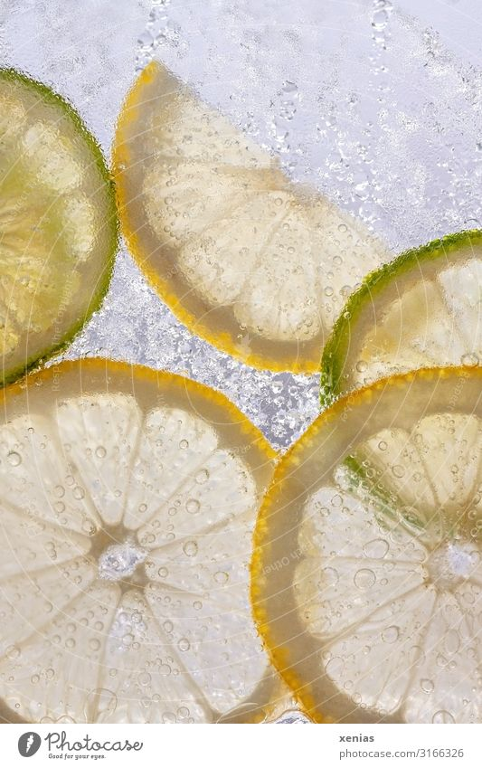 Lemon and lime slices in ice water Slices of lime Slice of lemon Frozen water Fruit Organic produce Beverage Cold drink Drinking water Wet Round Sour Yellow
