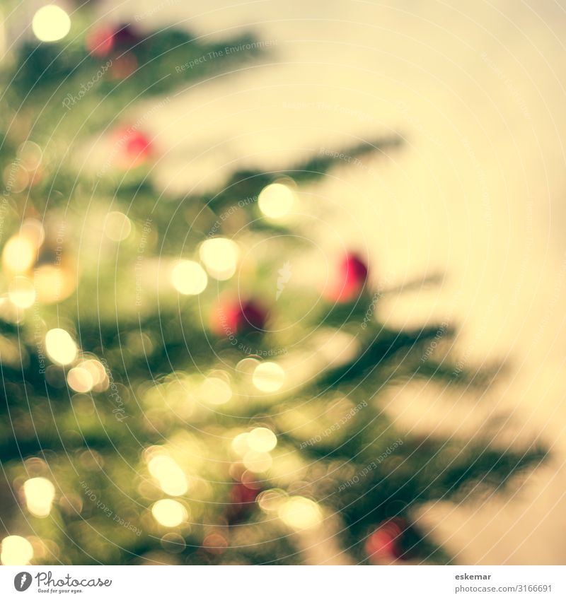 christmas tree, defocused Living or residing Flat (apartment) Interior design Decoration Room Living room Feasts & Celebrations Christmas & Advent