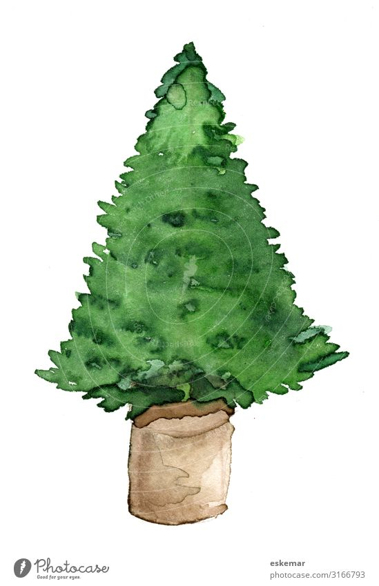 Christmas tree in pot, watercolour on paper Feasts & Celebrations Christmas & Advent Art Work of art Painting and drawing (object) Watercolors Painted Tree