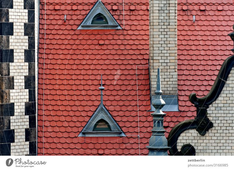 Vacation & Travel Town Travel photography Architecture Tourism Copy Space Roof Capital city City trip Old town Dresden Saxony Roofing tile Oriel Dormer