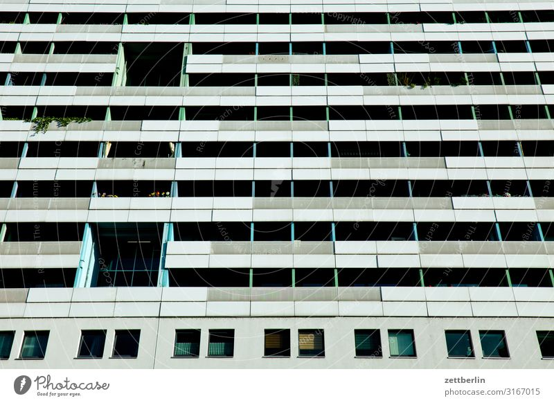 Plant Town Green Flower House (Residential Structure) Window Architecture Life Sadness Copy Space Facade City life High-rise Gloomy Concrete Apartment Building