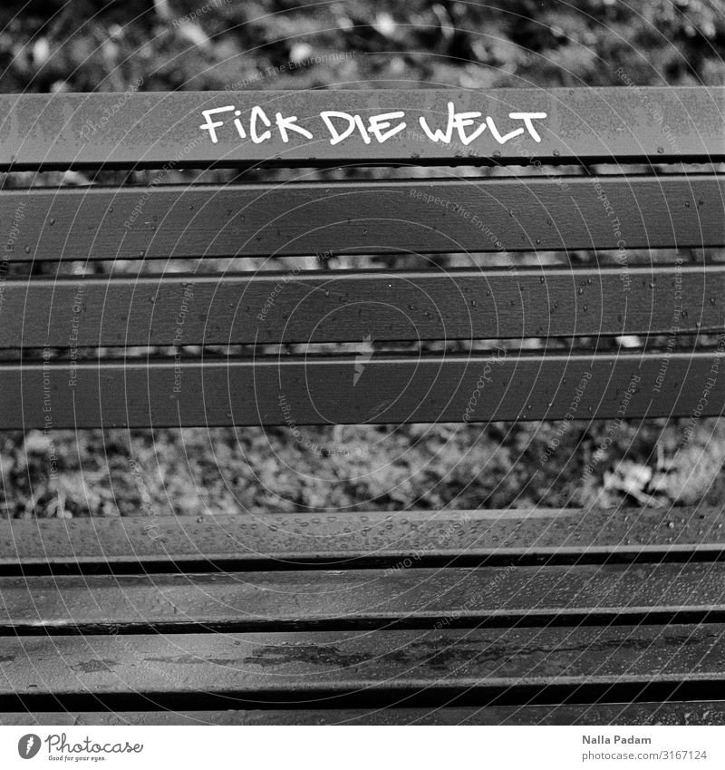 Dick Wie Felt Bochum Germany Europe Town Deserted Wood Graffiti Sit Gray Black Aggravation Grouchy Frustration Embitterment Communicate Bench Park bench Colour