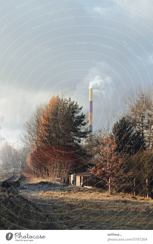 Tree Meadow Bushes Beautiful weather Smoke Railroad tracks Autumnal Chimney Thermal power station Chemnitz