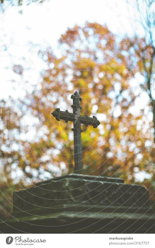 cross gravesite cemetery Senior citizen Life Dream Sadness Emotions Compassion To console Concern Grief Death Cemetery Crucifix Christian cross Colour photo