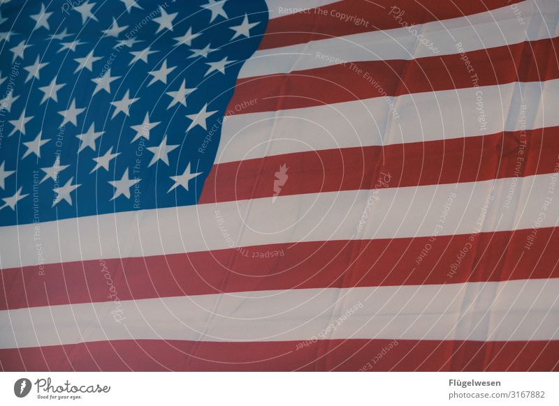 Vacation & Travel Far-off places Movement Tourism Freedom Trip Adventure Wind USA Political movements Flag Americas American Flag Select Sightseeing