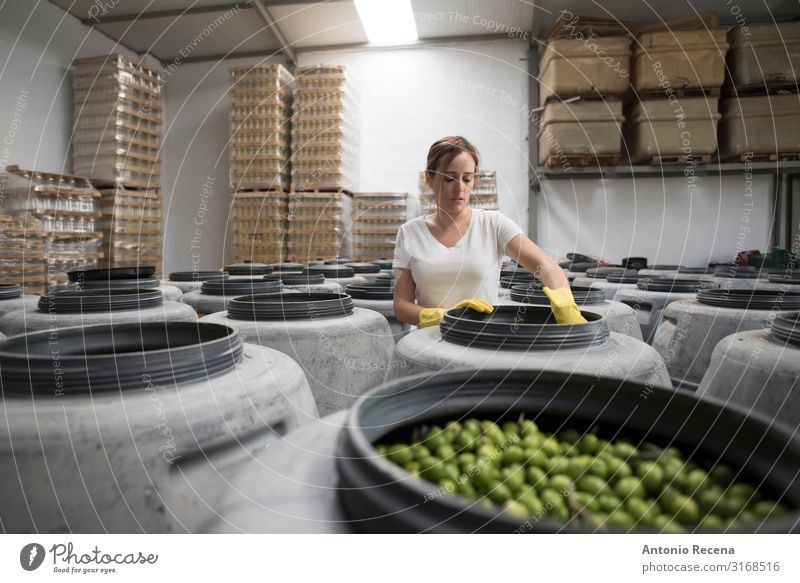 olives quality Food Vegetable Fruit Lifestyle Human being Feminine Woman Adults 1 30 - 45 years Work and employment Old Olive Olive oil Industry Profession