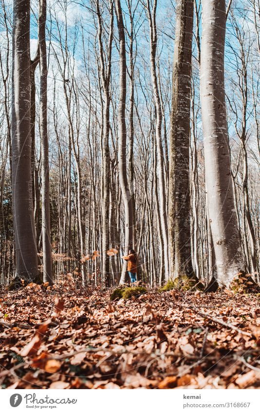 Woman hugs tree in the forest Life Harmonious Well-being Contentment Senses Relaxation Calm Meditation Leisure and hobbies Freedom Human being Feminine Adults 1