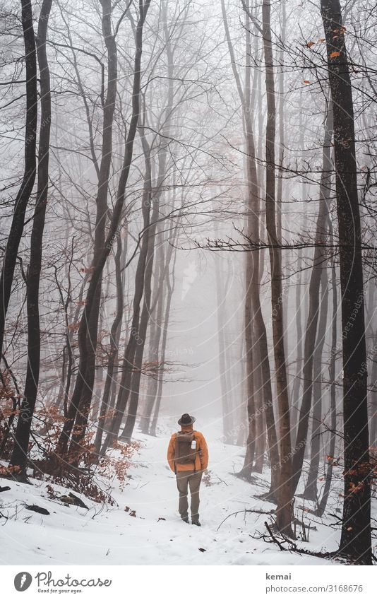 Man with hat and rucksack in the forest in winter, rear view Lifestyle Harmonious Well-being Contentment Senses Relaxation Calm Leisure and hobbies Trip