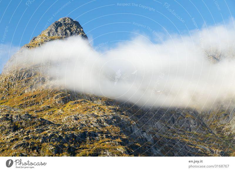 flatter Vacation & Travel Environment Nature Landscape Elements Sky Clouds Autumn Beautiful weather Fog Rock Mountain Peak Lofotes Norway Scandinavia Point Blue