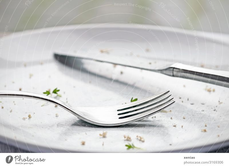 light empty eaten plate with knife and fork Plate Cutlery Knives Fork Cress Breadcrumbs Nutrition Eating Diet Fasting Green Silver White Gluttony Appetite