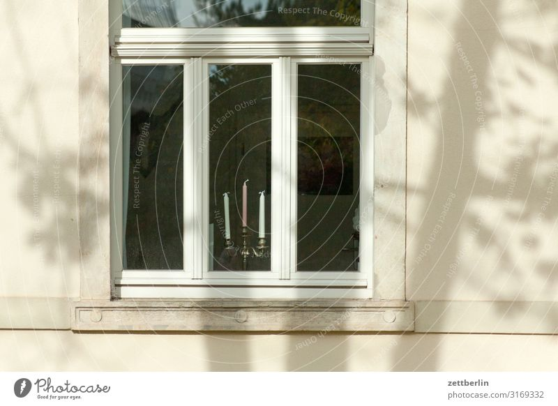 Candles in the window Old town Architecture Town Living or residing Apartment Building Facade Window Window pane Candlestick 3 Light Bright Sun Shadow Tree