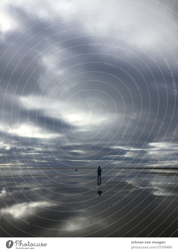sea noise Human being Body Environment Nature Landscape Plant Animal Sand Water Clouds Storm clouds Bad weather Wind Gale Waves Fjord Island To enjoy Hiking