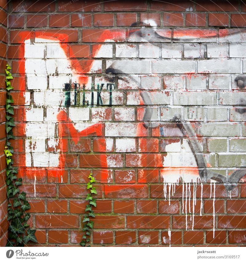 Offence M Subculture Street art Fern Wall (barrier) Brick Graffiti Trashy Red Moody Colour Creativity Change Offense Word Stencil letters Typography Weathered