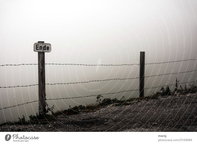 week-end Nature Autumn Bad weather Fog Barbed wire fence Signs and labeling Signage Warning sign Dark Loneliness End Warning label Threat Exclusion Colour photo