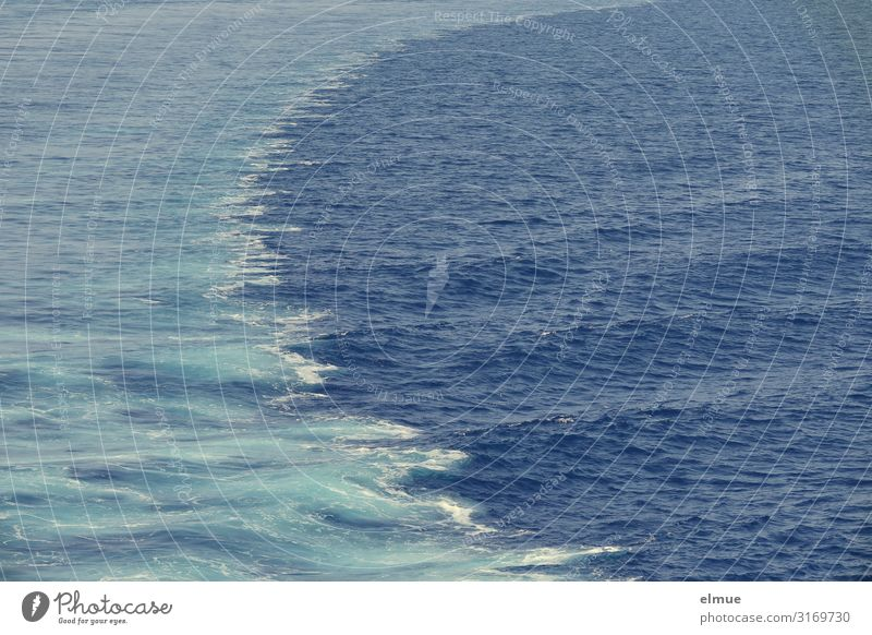 Vacation & Travel Blue Water Ocean Joy Movement Tourism Trip Design Dream Waves Adventure Energy Speed Wet Logistics