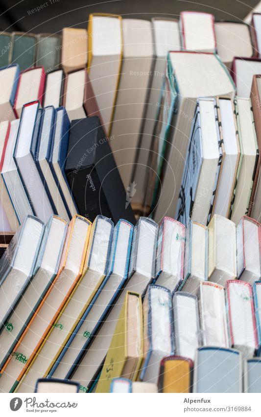 Vacation & Travel Relaxation Joy School Contentment Leisure and hobbies Dream Creativity Joie de vivre (Vitality) Future Study Book Academic studies Reading