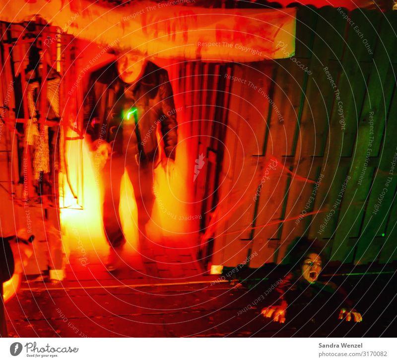 Halloween Exhibition Museum Shows Party Animosity Hallowe'en Creepy Death Evening