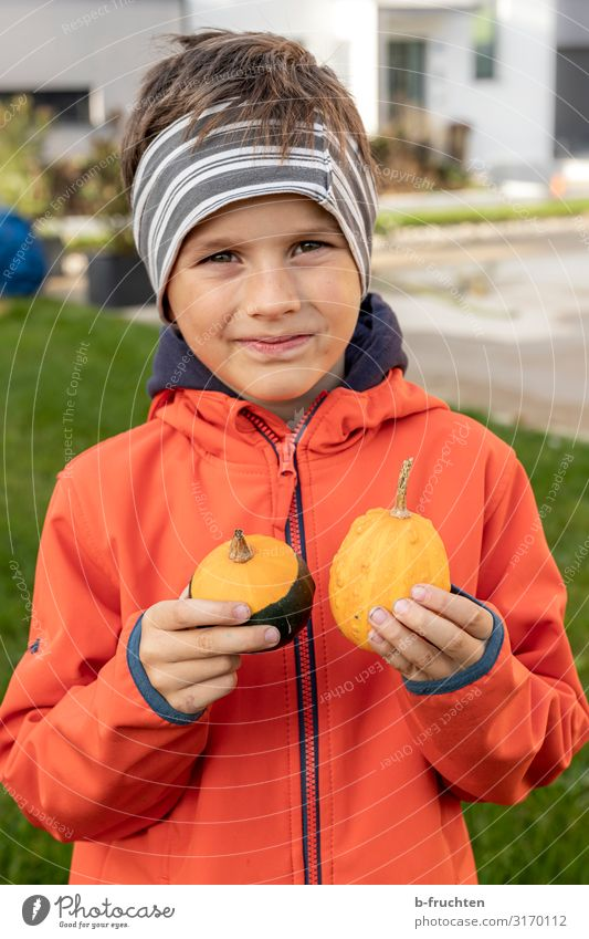 Child with ornamental pumpkins Leisure and hobbies Playing Face 1 Human being 3 - 8 years Infancy Jacket Headscarf Select To hold on Pumpkin Headband Autumn