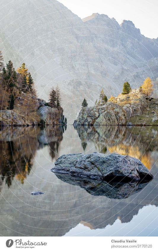Trecolpas Lake in the French Alps during Autumn Environment Nature Landscape Tree Rock Mountain Hiking Colour Mirror image Telephoto lens lac no persons