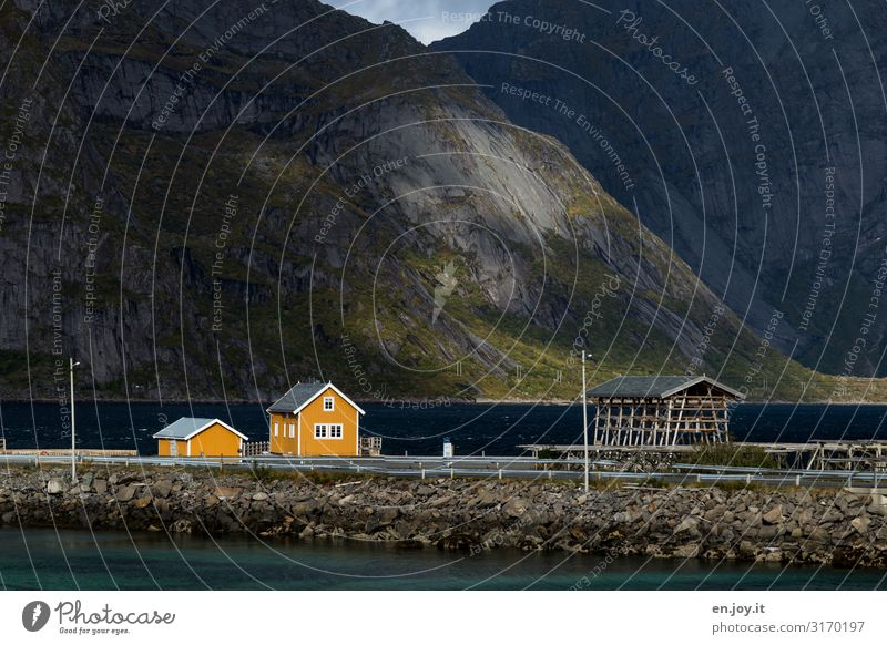 Vacation & Travel Nature Landscape House (Residential Structure) Mountain Autumn Yellow Tourism Idyll Village Hut Sustainability Scandinavia Norway Fishery