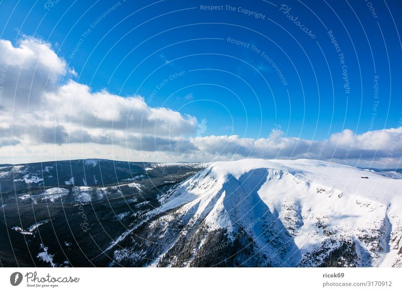 View from the Schneekoppe in the Giant Mountains in Czech Republic Relaxation Vacation & Travel Tourism Winter Winter vacation Hiking Sports Winter sports