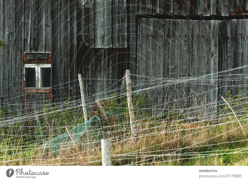Stable or barn Village Barn Wood House (Residential Structure) Wooden house Wooden board Fence Border Boundary Deserted Copy Space