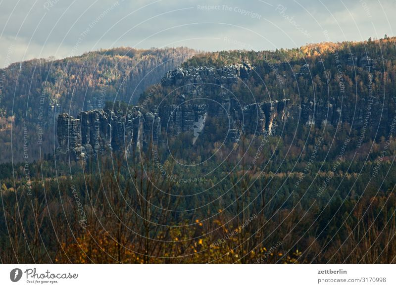 scratchstones Mountain Hill Village Elbsandstone mountains Relaxation Rock Vacation & Travel Autumn Landscape Deciduous forest Saxon Switzerland Forest Hiking