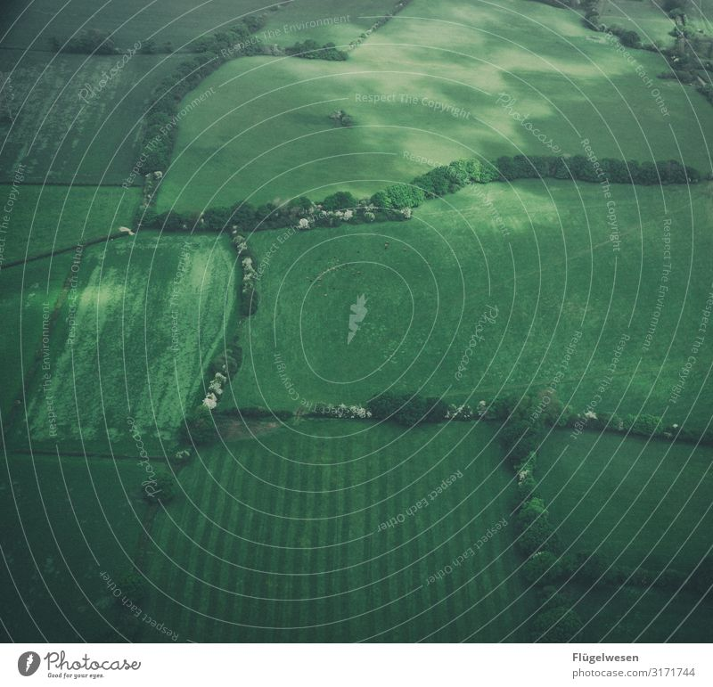 Field & Meadows Aerial photograph drone Green Airplane Flying Aviation Vantage point Landscape Farmer Forest