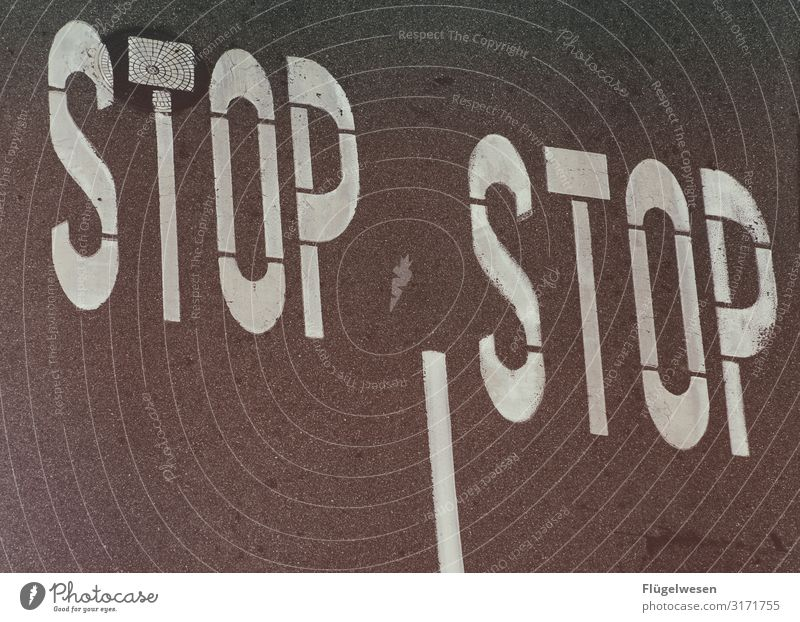 STOP | STOP Street Road traffic people off Lane markings Traffic lane pedestrian Pedestrian crossing Wait Tar Crossroads Arrow Marker line Stop Stop sign