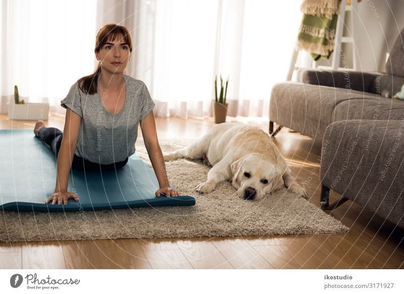 Doing exercise with my lazy dog Lifestyle Style Beautiful Body Face Healthy Health care Athletic Fitness Relaxation Living room Sports Sports Training Yoga