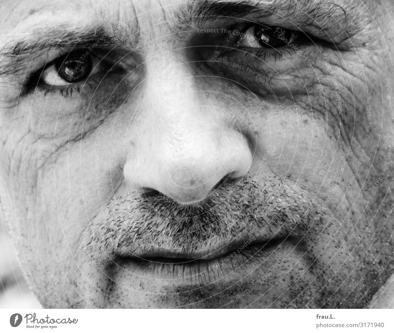 eye contact Human being Masculine Man Adults Face Facial hair 45 - 60 years Looking Esthetic Uniqueness Beautiful Power Authentic Sadness Sensitive Intensive