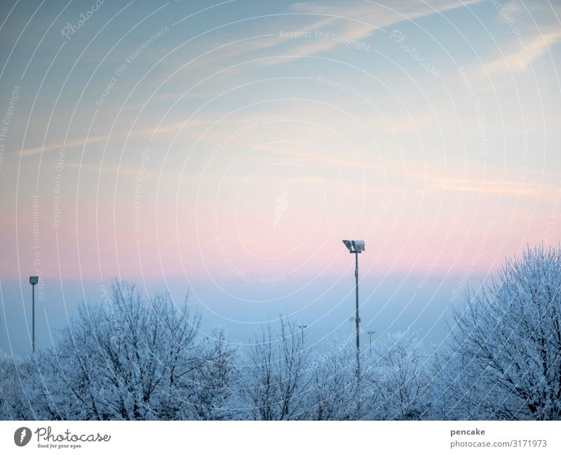 Nature Landscape Tree Cold Lamp Park Fresh Ice Weather Climate Frost Play of colours Stadium Surveillance Hoar frost Floodlight