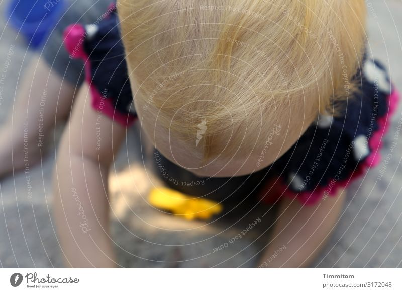 a piece of cake Human being Toddler Head Hair and hairstyles 1 Sand Playing Multicoloured Emotions Sandpit Playground Affection Concentrate Colour photo