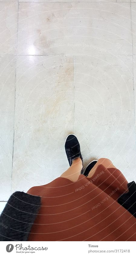 step by step Feminine Woman Adults Legs 1 Human being Clothing Dress Jacket Footwear Going Brown Black Marble floor Museum Shopping malls Stride Colour photo