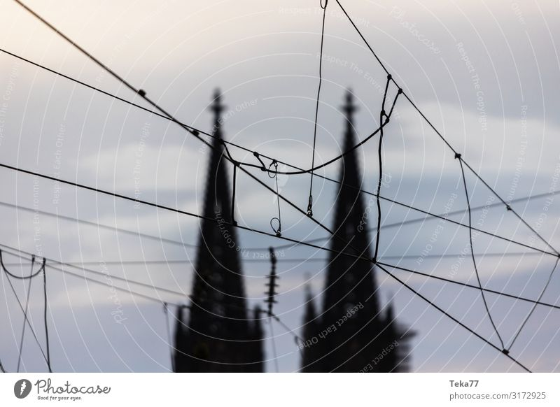 Cologne - Railway - Overhead line Transport Means of transport Traffic infrastructure Esthetic Cologne Cathedral Colour photo Exterior shot