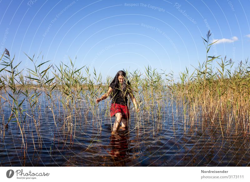 Woman in the reeds Life Harmonious Well-being Swimming & Bathing Leisure and hobbies Vacation & Travel Camping Summer Summer vacation Sun Human being Feminine