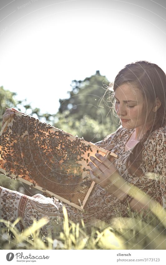 Young beekeeper with a honeycomb full of bees Human being Feminine Young woman Youth (Young adults) Woman Adults 1 18 - 30 years 30 - 45 years Environment