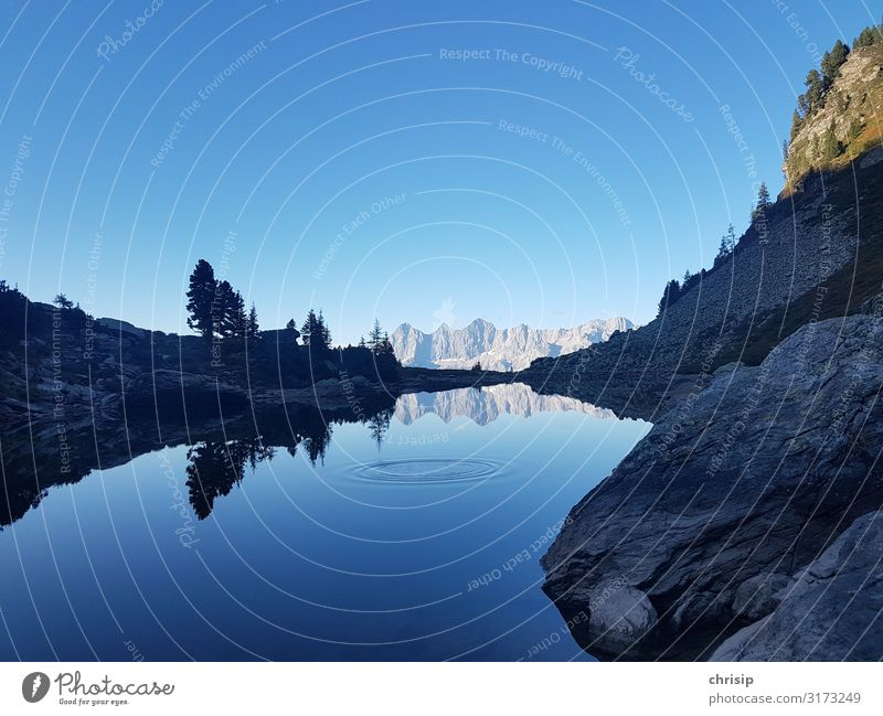2x roof tile Environment Nature Landscape Sky Cloudless sky Beautiful weather Tree Rock Alps Mountain Dachstein Peak Lakeside Mirror Lake Wet Blue