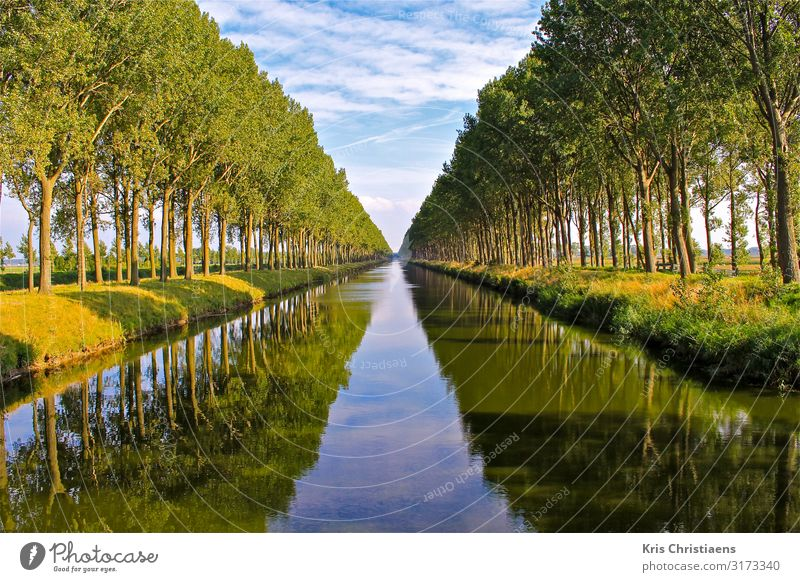 Reflections Nature Landscape Plant Water Spring Summer Tree Brook River Wood Blue Green canal Leopold Canal belgium Rural conservation Flanders leopold