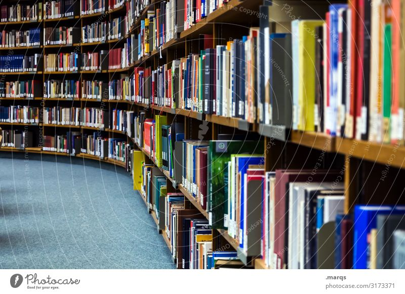 library Education Adult Education Academic studies Study Library Book Reading Many Colour photo Interior shot Deserted