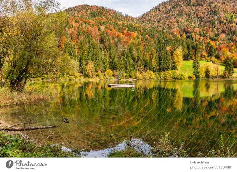 Autumn landscape Leisure and hobbies Vacation & Travel Tourism Hiking Nature Landscape Water Beautiful weather Forest Hill Alps Lakeside