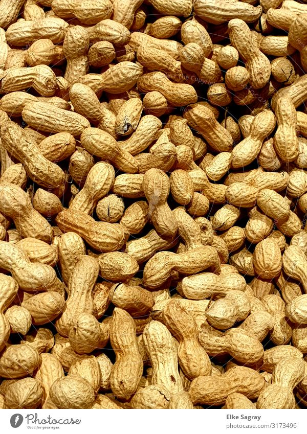 Shopping without packaging waste, peanuts without plastic Food Peanut Original Beginning Advancement Healthy Moral Nature Survive Colour photo Interior shot