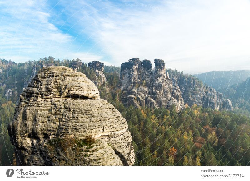 Elbsandsteingebirge, view from the Bastei bridge to the Ganssteine Vacation & Travel Tourism Trip Mountain Hiking Environment Nature Landscape Plant Elements