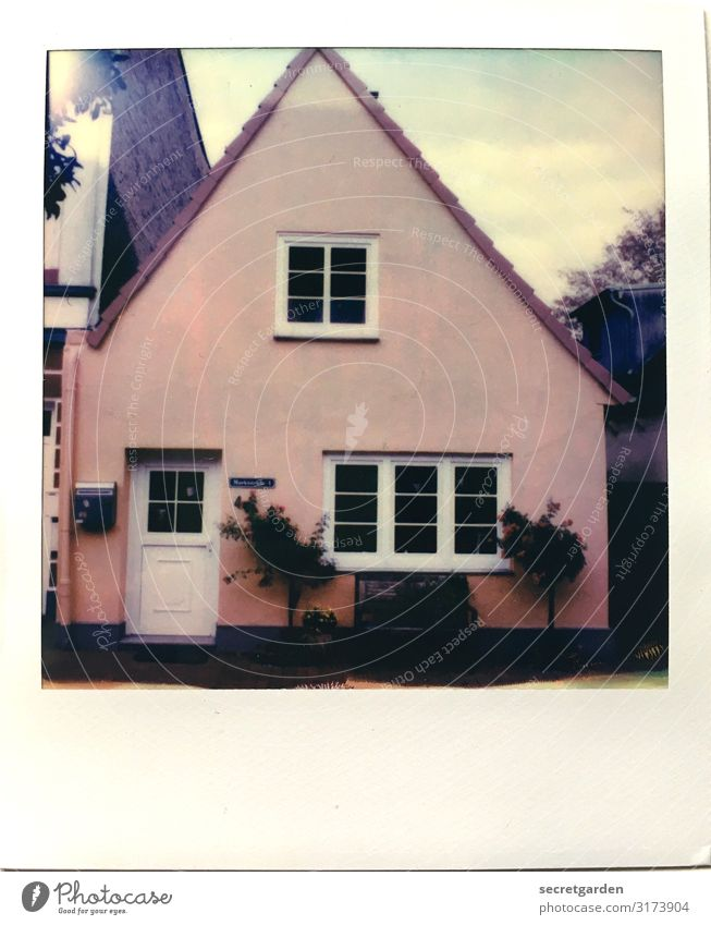 kind of eccentric. Living or residing Flat (apartment) Dream house Sky Plant Bushes Schleswig Small Town Facade Window Door Mailbox Pink Colour Symmetry Dark