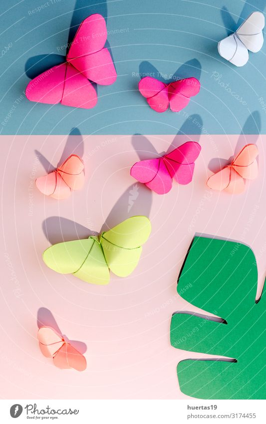 Multi-colored origami butterflies from above Lifestyle Design Beautiful Leisure and hobbies Playing Decoration Wallpaper Art Culture Butterfly Paper Toys