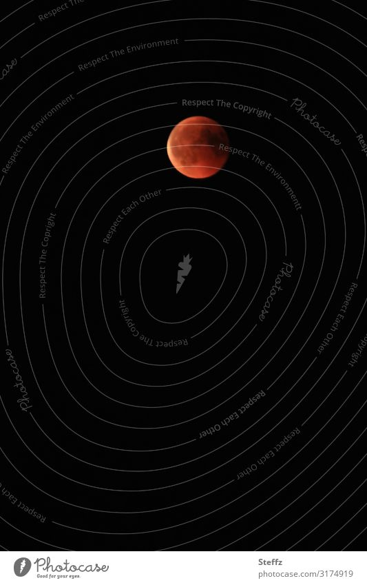 Moon in red Environment Nature Night sky Lunar eclipse Full  moon Illuminate Exceptional Dark Natural Round Beautiful Orange Red Black Moody Romance Longing