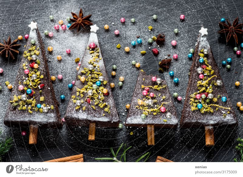 four christmassy decorated fir trees made of chocolate cake Cake Christmas & Advent Food Christmas tree Dough Baked goods Candy Chocolate brownie Chocolate cake