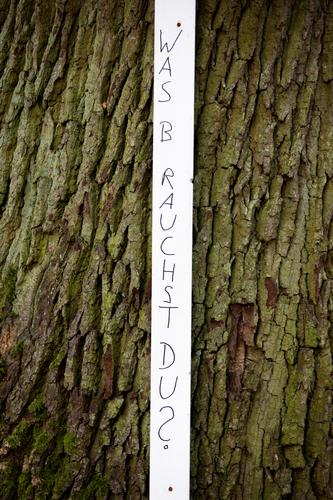 What do you need? Tree Tree bark Characters Signs and labeling Stripe Simple Curiosity Thin Brown Black White Desire Dedication Humanity Solidarity Help